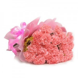 20 pieces Carnations Bouquet