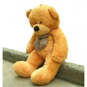 3-feet-huggable-bear