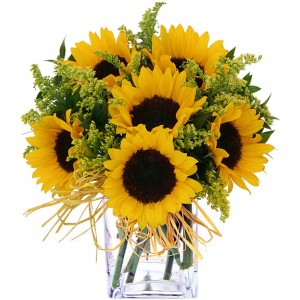 6 Pieces Sunflower in a Vase