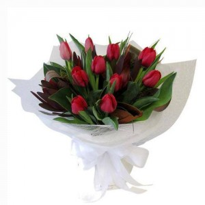 10 Pieces Red Tulips