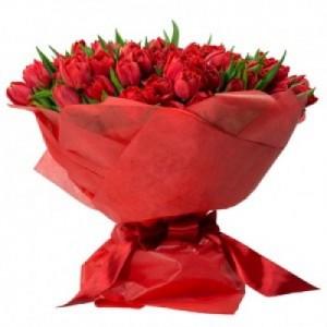 romantic 100 red tulips