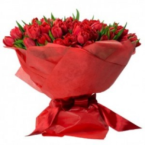 romantic 100 red tulips