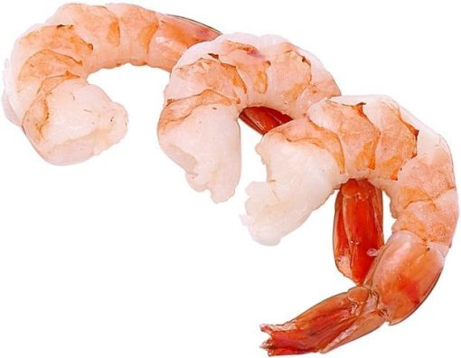 Shrimp (free clipart)
