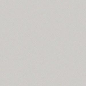 Alucobond Sunrise Silver Metallic II Color Swatch