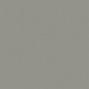 "Aluminum Flat Sheets Pac-Clad® SILVER METALLIC 040"""