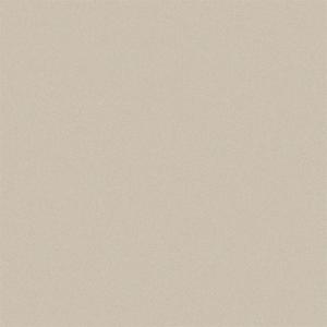 Sample - Pac-Clad CHAMPAGNE METALLIC