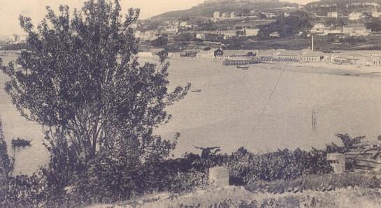 1910-31