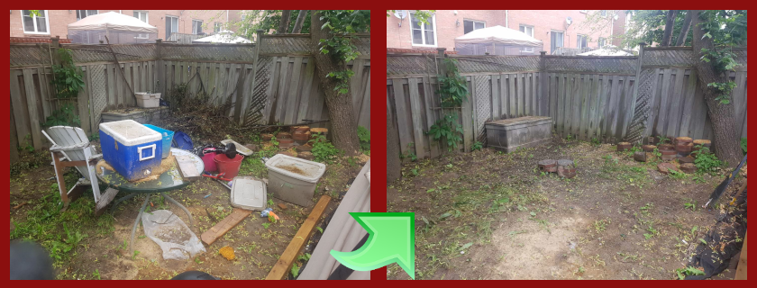 From this to this...a backyard clean up.