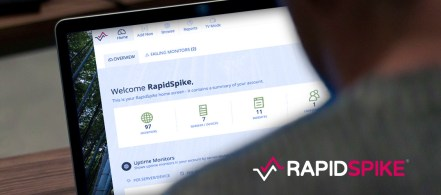 RapidSpike App Design