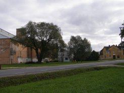 Rapla veski, september 2008