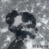 Krush04500