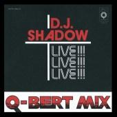 Shadowqbert500