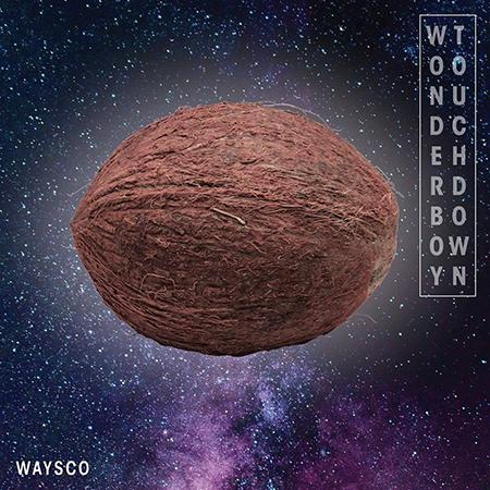 Waysco feat. Gia' Fu – Donmisdisflay