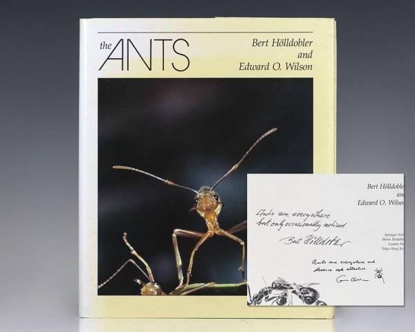 Ants.