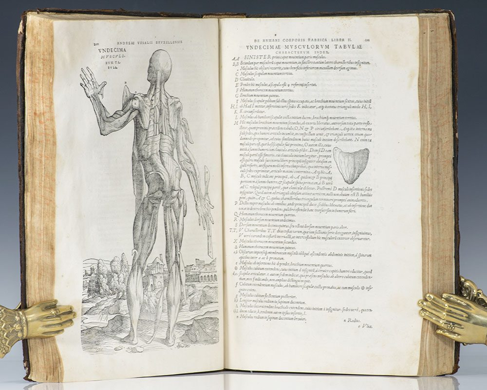 Rare Book Highlights: Vesalius' On the Fabric of the Human Body.