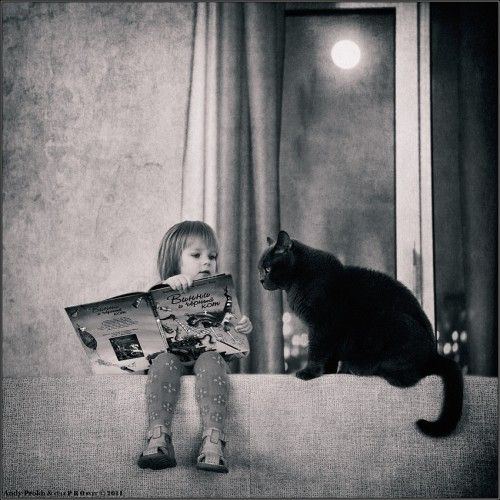 people reading with cats