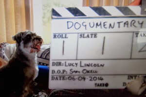 Behind the scenes with Lucy Lincoln