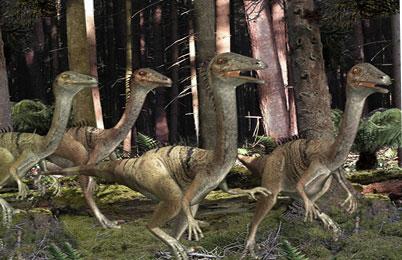 Troodon Dinosaur
