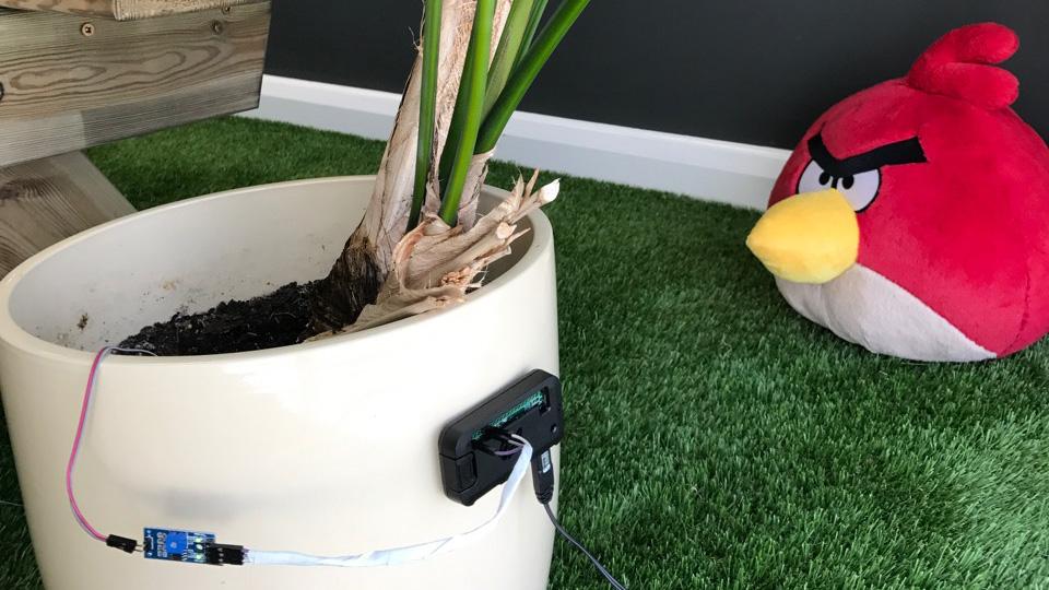 Pi Zero W Soil Moisture Sensor and Slack | Raspberry Coulis