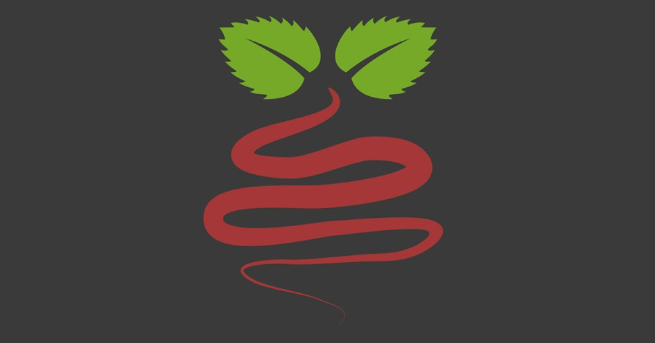 Raspberry Coulis - Raspberry Pi Projects, Guides, Hints and Tips