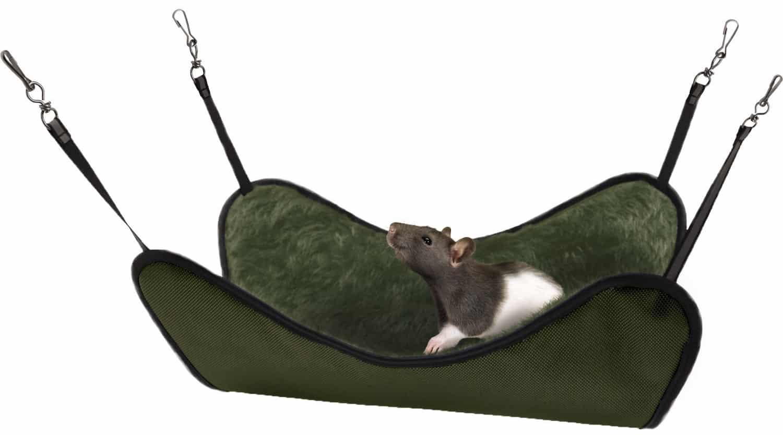 The Best Rat Hammock