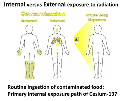 Internal versus External exposure to radiation