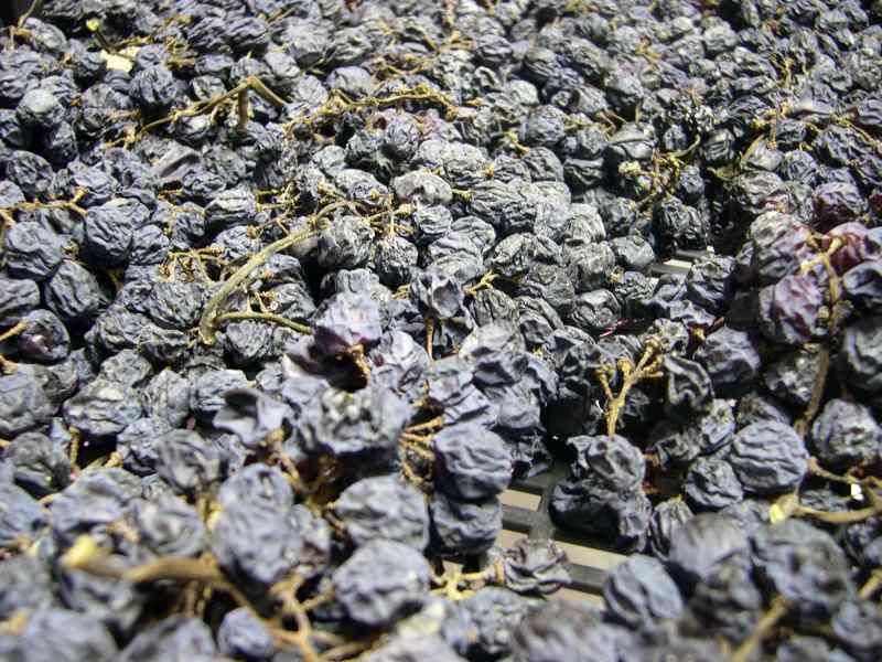 Dry-Amarone-Grapes