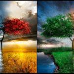 3 Factors That Affect Climate