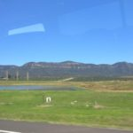 Hunter Valley Short Trip