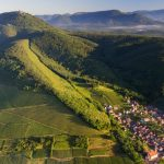 Alsace In 1,000 Words Or Less