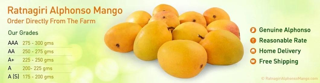 alphonso mango online 2020