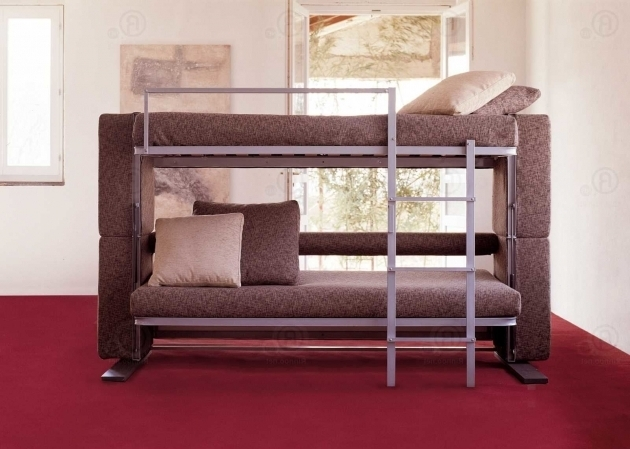 Couch That Turns Into A Bunk Bed 2019 Bed Amp Headboards