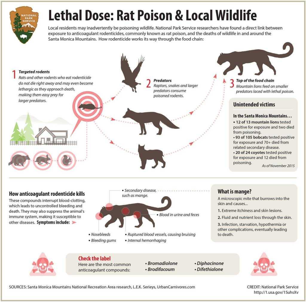 Don't Harm Pets