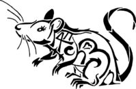 cropped-logo17-2.jpg