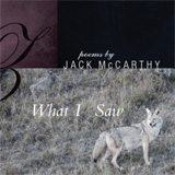 What I Saw by Jack McCarthy