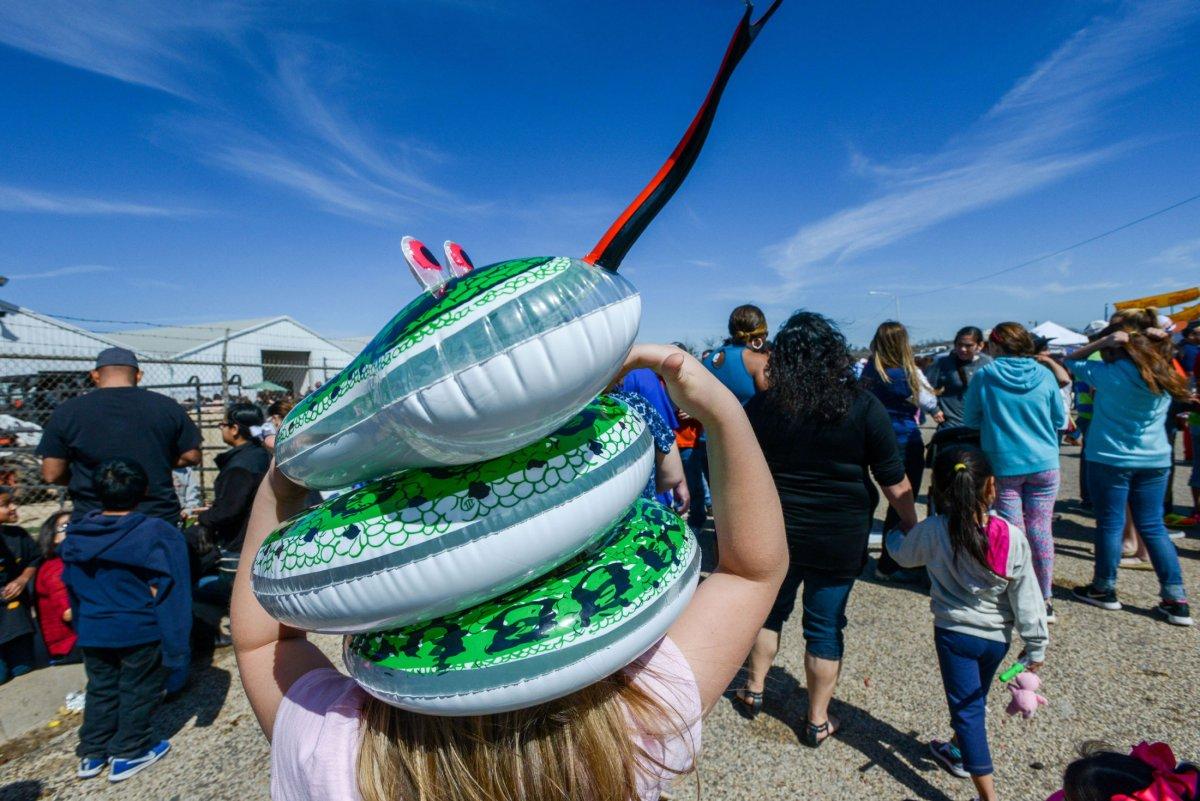 Rattlesnake Roundup Festivities