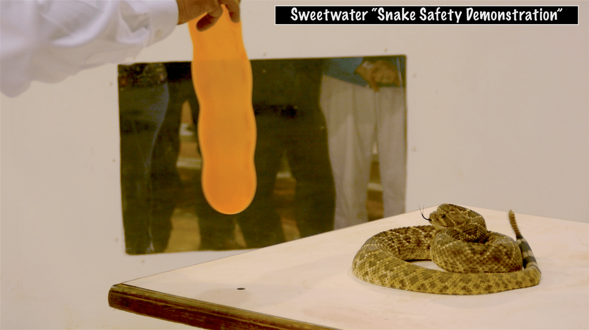 """Sweetwater """"Snake Safety Demonstration"""""""