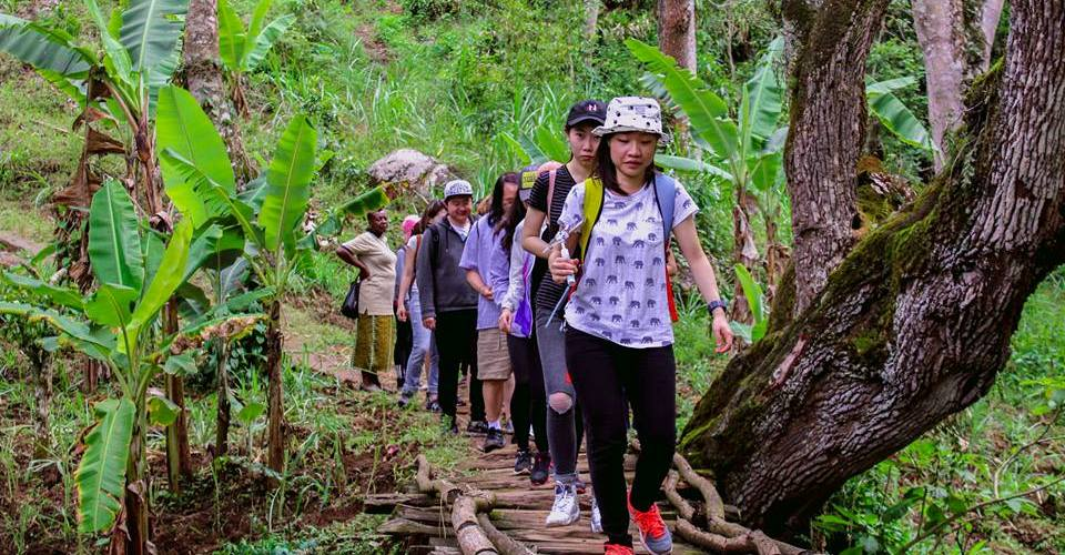 Hiking with Machame Nkwenshoo Cultural Tourism