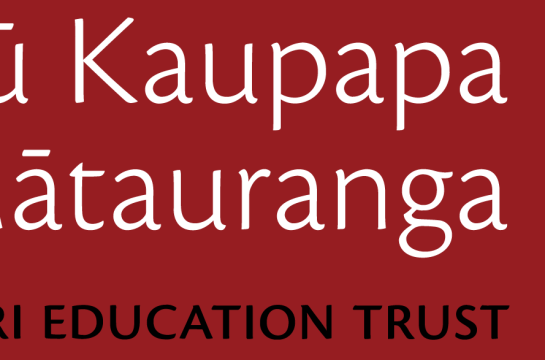 Maori Education Logo-01