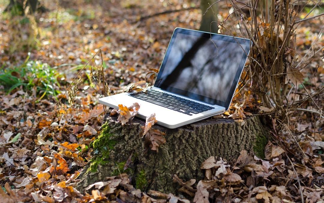 Asentando las bases de la Transformación Digital