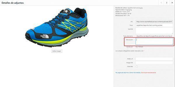 Captura de pantalla de WordPress indicando el lugar donde va la descripción larga para optimizar imágenes para web