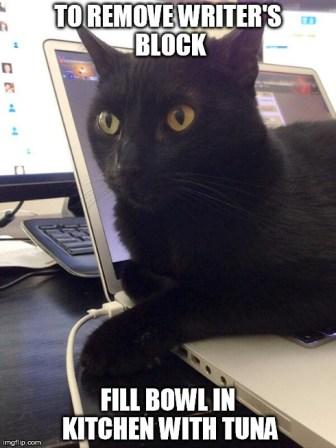 DiNozzo on my mac
