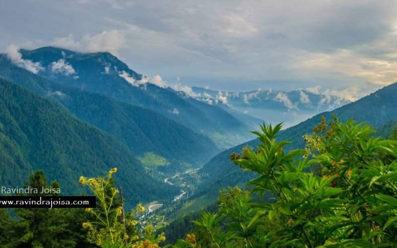 naranag forest