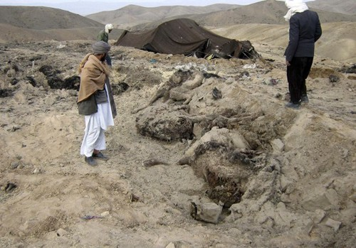 Afghans look at animals killed after the air strike
