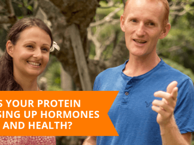 Is Your Protein Messing Up Your Hormones And Health?
