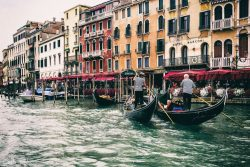 Venice, Plum and a 50th Wedding Anniversary
