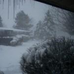 Suburbia, Kalamazoo, snow