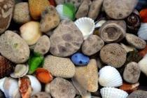 Northern MI pebbles