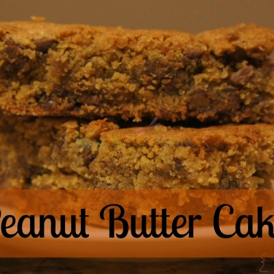 Peanut Butter Cake Bars Recipe ~ Gluten Free