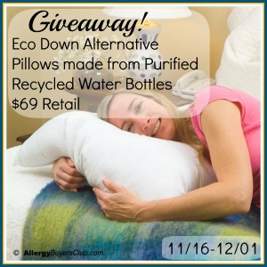 Eco Down Alternative Pillows made from Purified Recycled Water Bottles $69 Retail Giveaway